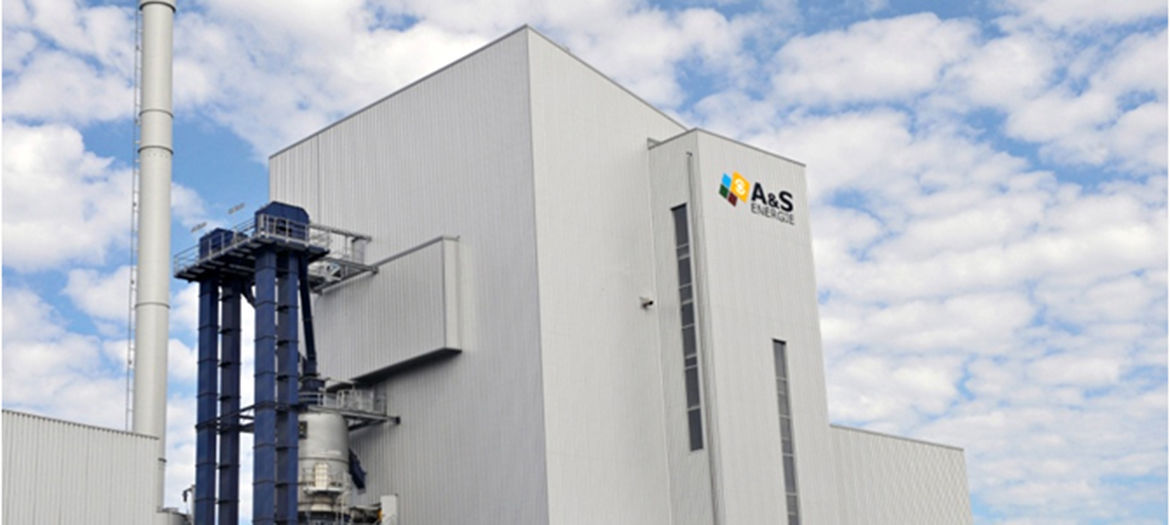 Lender's engineering for a biomass power plant, Belgium