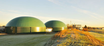 Biomass and Biogas