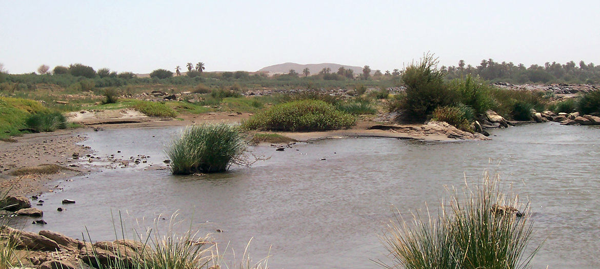 Environmental and Social Impact Assessments (ESIA) for hydropower plants, Sudan