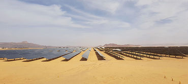 Owner's Engineer for a 103 MWp solar energy project, Jordan
